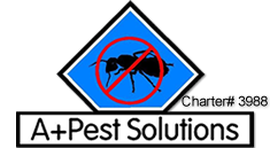 A Plus Pest Solutions
